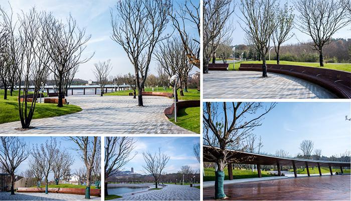 项目规模:牛首山文化旅游区核心区景观设计(东入口至佛顶宫上行线
